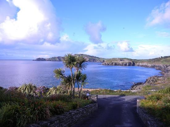 Sandycove House Bed & Breakfast: View from driveway