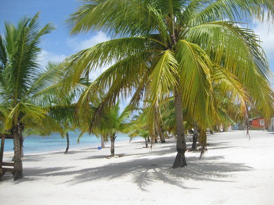 Dominikanska Republiken: mieux que sur les cartes postales !