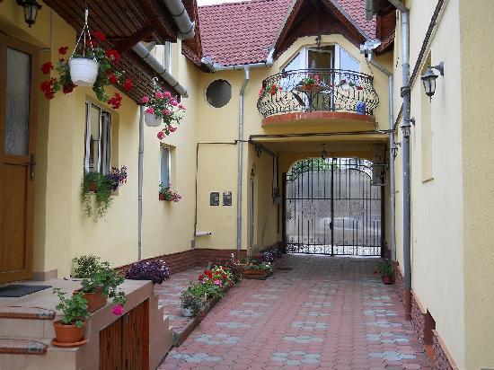 Pensiunea Magnolia Sibiu : courtyard