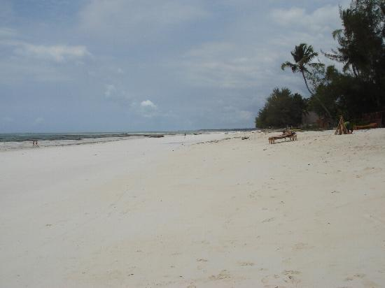 Nyumba yetu : Spiaggia