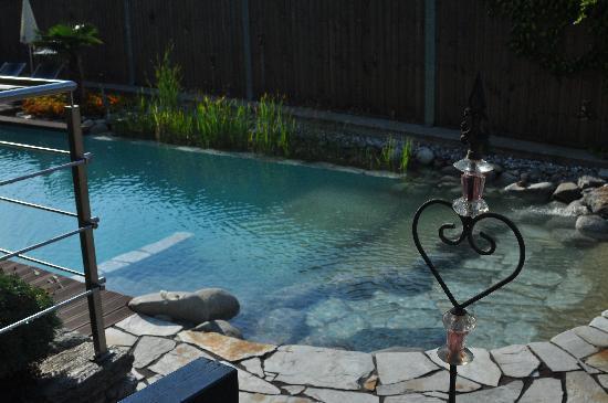 Hotel & Appartements Spitalerhof : piscina