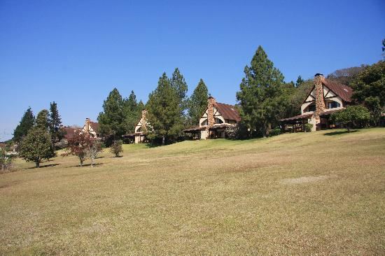 Pine Lake Resort: All the chalets side by side