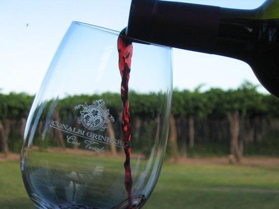 Conalbi Grinberg Casa Vinicola: Great wine