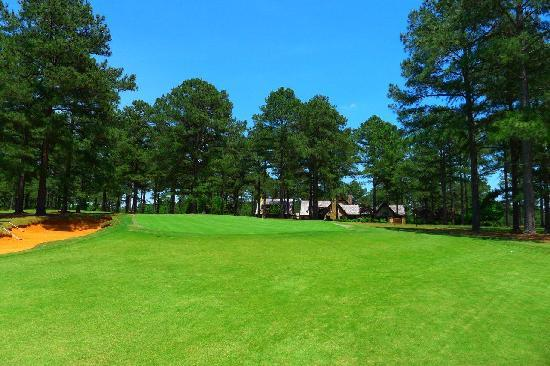 Cuscowilla on Lake Oconee: Hole 12