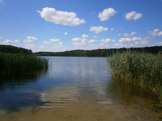 Brodnica, פולין: peace