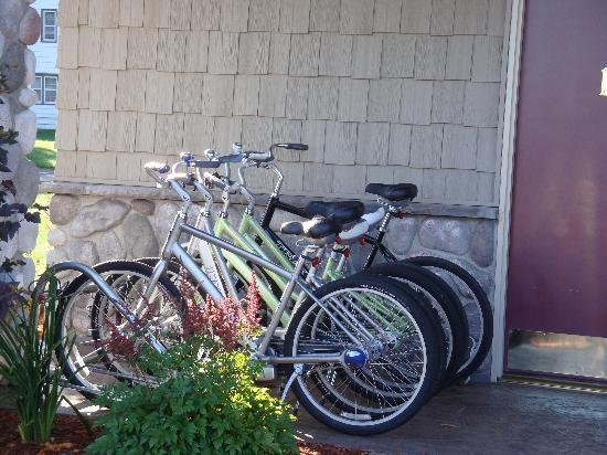 River Rock Inn & Bait Shop: Trek Bikes (free)