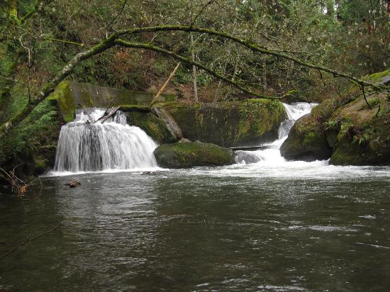 Bellingham, WA: One of the smaller falls.