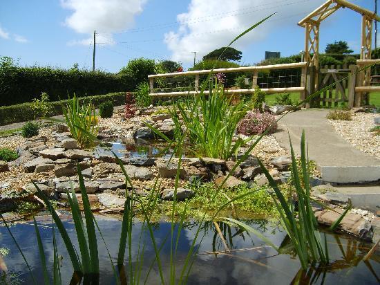 Sunnymeade Country House: back garden