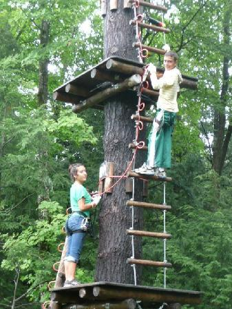 Adirondack Extreme Adventure Course: Scaling the tree