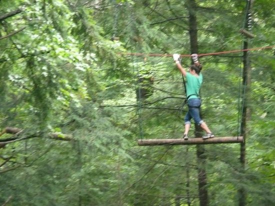 Photo of Tourist Attraction Adirondack Extreme Adventure Course at 35 Westwood Forest Lane, Bolton Landing, NY 12814, United States