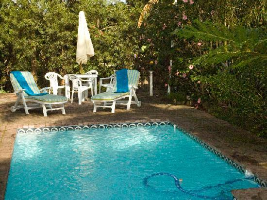 Knysna Herons Guest House: Shady Pool Areas