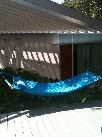 Kimber Modern Hotel: The hammock I enjoyed for an afternoon sway...