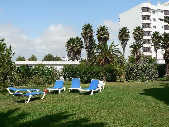 Hotel Apartamentos Mirachoro II: Gardens
