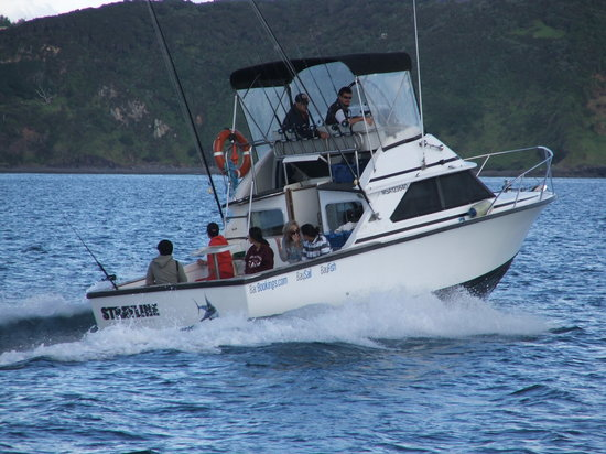 "Strayline Fishing Charters : ""Strayline"" sportfisher"