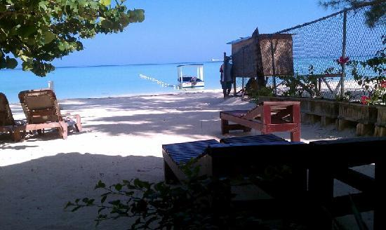 White Sands Negril: view from cocoa la palm cafe