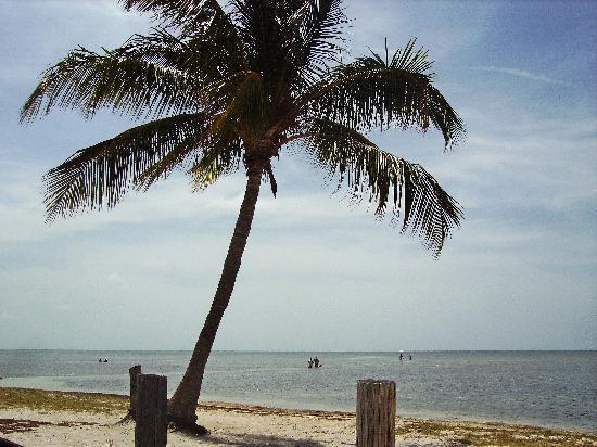 Havana Cabana Key West: Key West