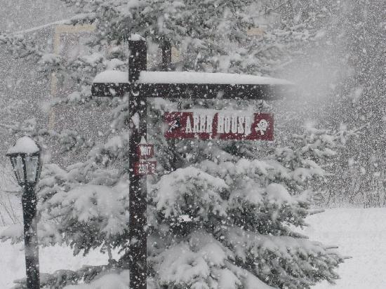 ARRR House: Snow, Snow, Snow