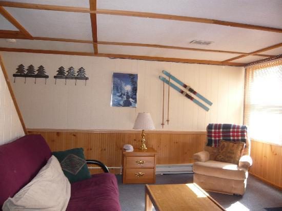 ARRR House: Living room in lower unit