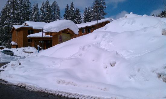 Truckee Donner Lodge: Winter Wonderland