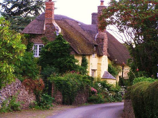 Tudor Cottage: A cottage nearby