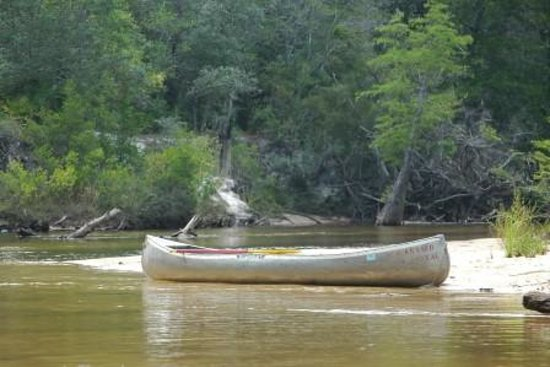 Holt, Floride : Blackwater canoe rental