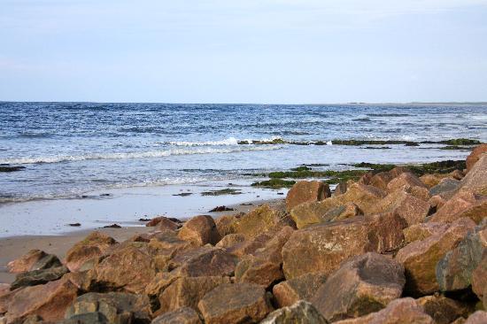 Nairn Beach : Rocky beach at Nairn