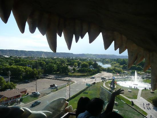 Drumheller, Kanada: Teeth with and a view