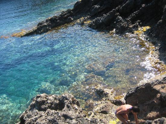 Ustica : Perfect snorkel/dive spot.