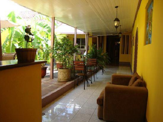 Iguana Hostel and Cafe: Patio