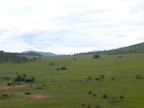 Tshukudu Bush Lodge: View from Veranda
