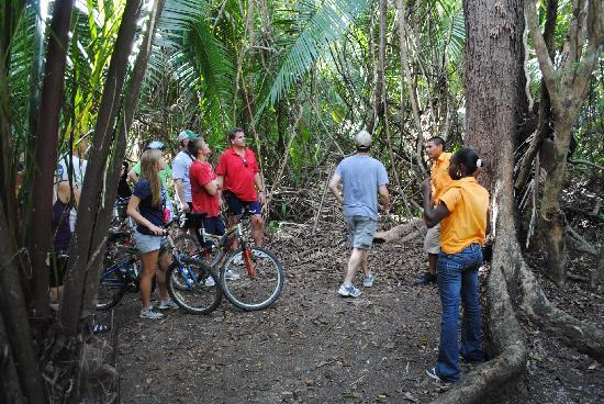 Bacab Eco Park: Bikers on trail with guides