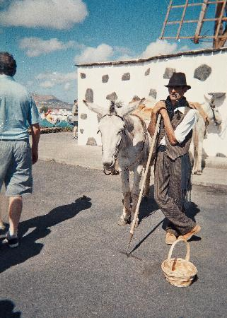 Teguise, Spain: donkey man