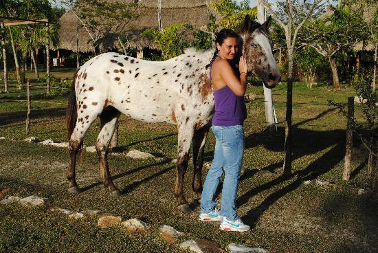"""Bacab Eco Park: Guest with """"Ladron"""" our upcoming Stud"""