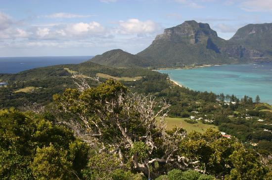 Arajilla Retreat - Lord Howe Island: Island