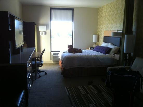 Home2 Suites By Hilton Salt Lake City/Layton, UT: the queen room..my service dog made himself comfortable!