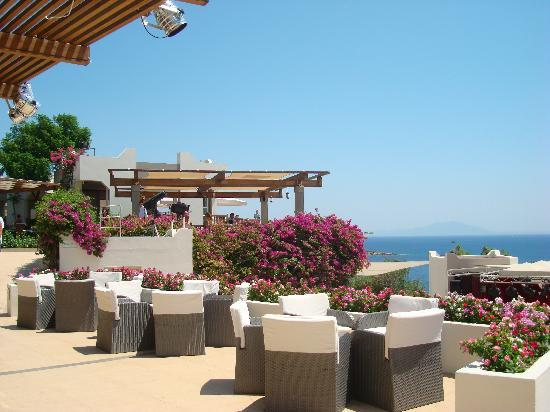 Club Med Bodrum Palmiye: bar and pool area
