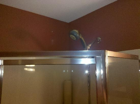 Dundee Arms Inn: Shower head that shoots out the door.