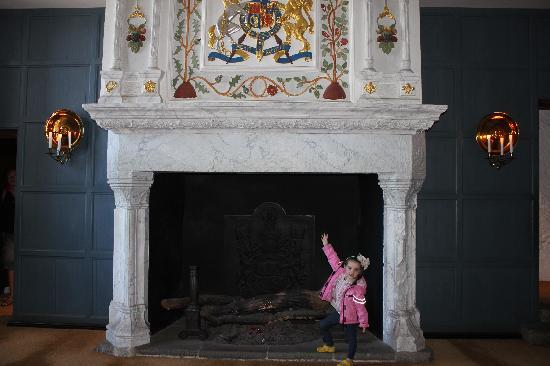 Beautiful Fireplaces our daughterone of the beautiful fireplaces - picture of