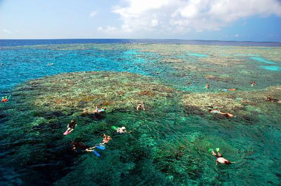 Cairns, Australia: Coral Lagoon