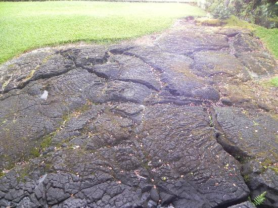 Holmes Sweet Home B&B: lava rock in the front yard
