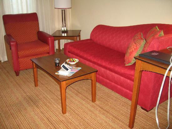 Residence Inn Houston The Woodlands/Market Street: Living area