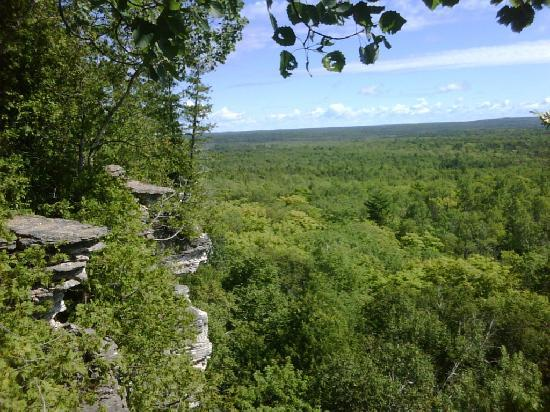Cup and Saucer Trail : View x3