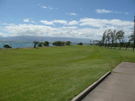 Waiehu Golf Course: Par 5 7th fairway looking back toward the tee