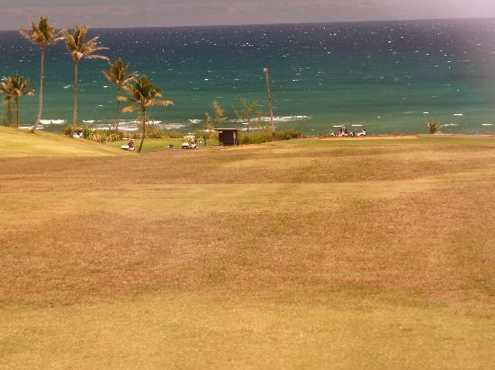 Waiehu Golf Course: Par 4 15th from middle of fairway, downhill all the way