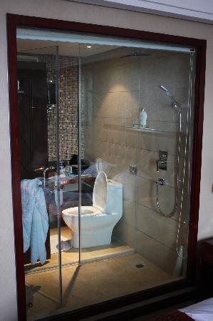 Xinhe Zhongzhou International Hotel: New Bathroom