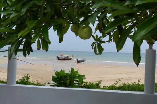 Kamala Dreams: view from pool area of beach