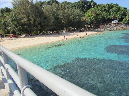 Sari Pacifica Hotel, Resort & Spa - Redang Island: taman laut