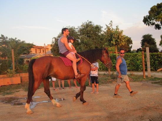 Agriturismo Barbadoro: Una passeggiata a cavallo gentilemente offerta dal Barbadoro