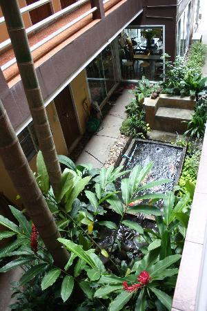 Banilah: Courtyard garden view