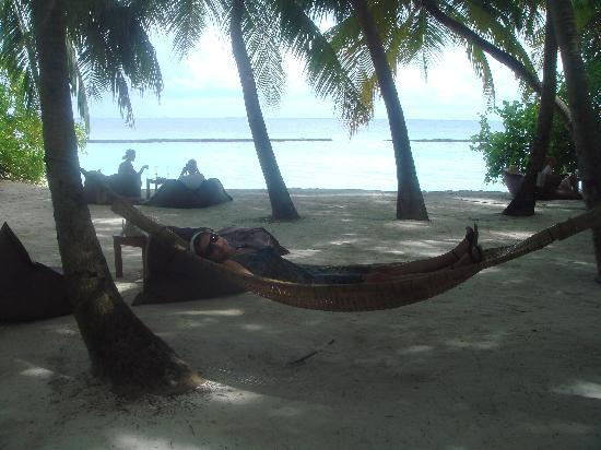 Baros Maldives: hammocks in front of sails bar